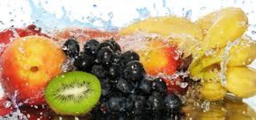 Guia Prático dos Cuidados com a Higiene dos Alimentos
